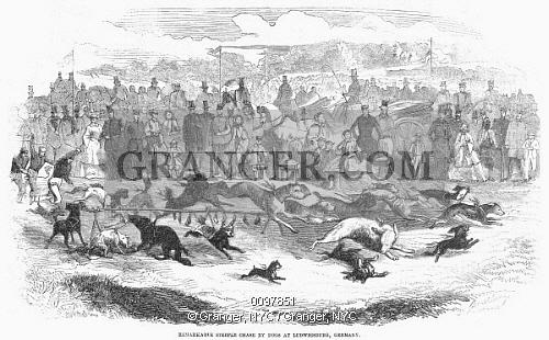 Image of GERMANY: DOG RACING, 1859..