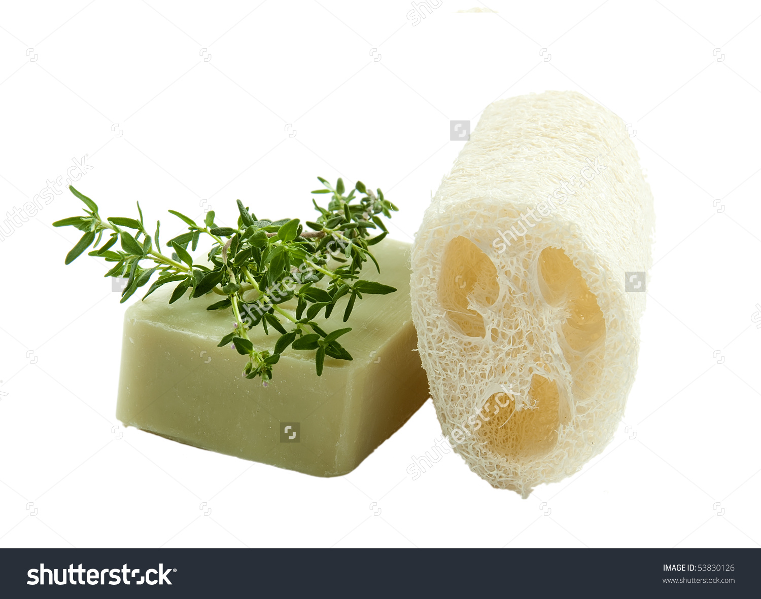 Natural Luffa Sponge With Thyme Soap, Isolated Stock Photo.
