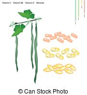Luffa Clipart Vector and Illustration. 9 Luffa clip art vector EPS.