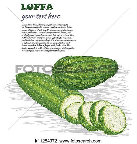 Clipart of luffa k11284972.
