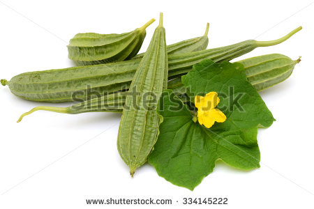 Ridge Gourd Stock Photos, Royalty.