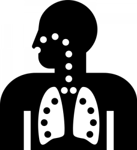 Lungs Clip Art Download.