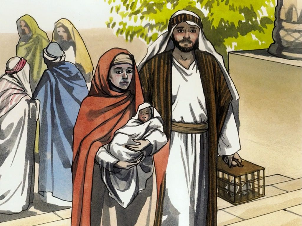 FreeBibleimages :: Infant Jesus at the Temple :: Simeon and.