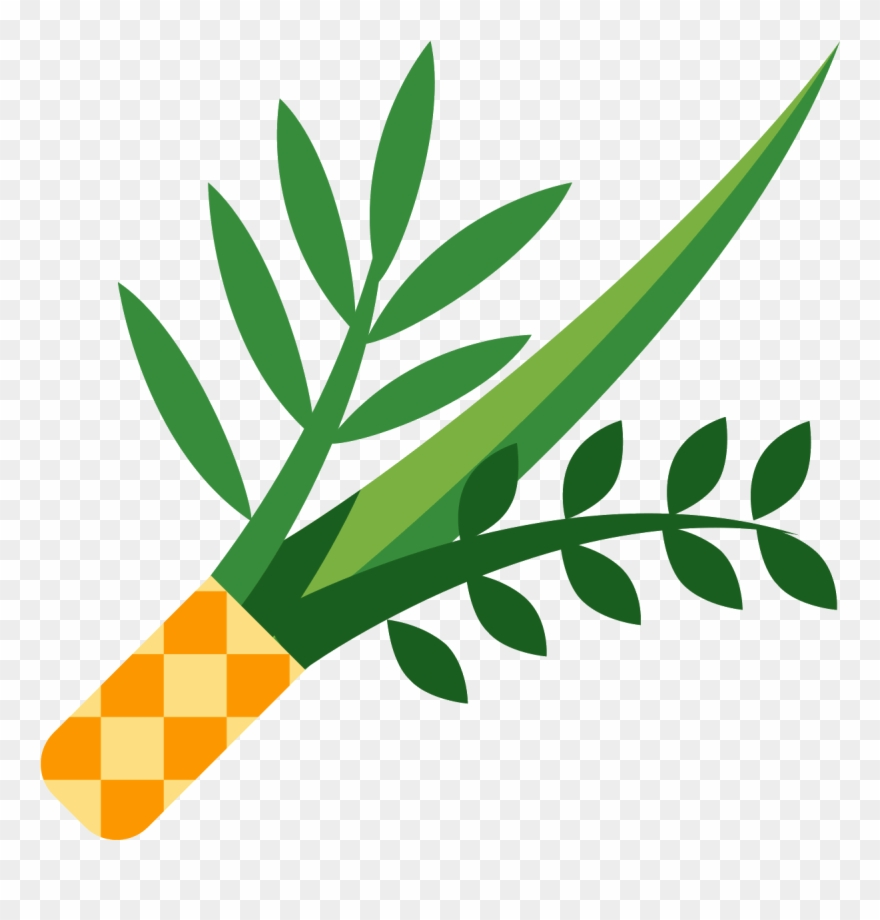 The Icon Is A Picture Of A Plant, Or Lulav.