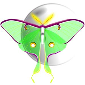 Luna Moth clipart, cliparts of Luna Moth free download (wmf.