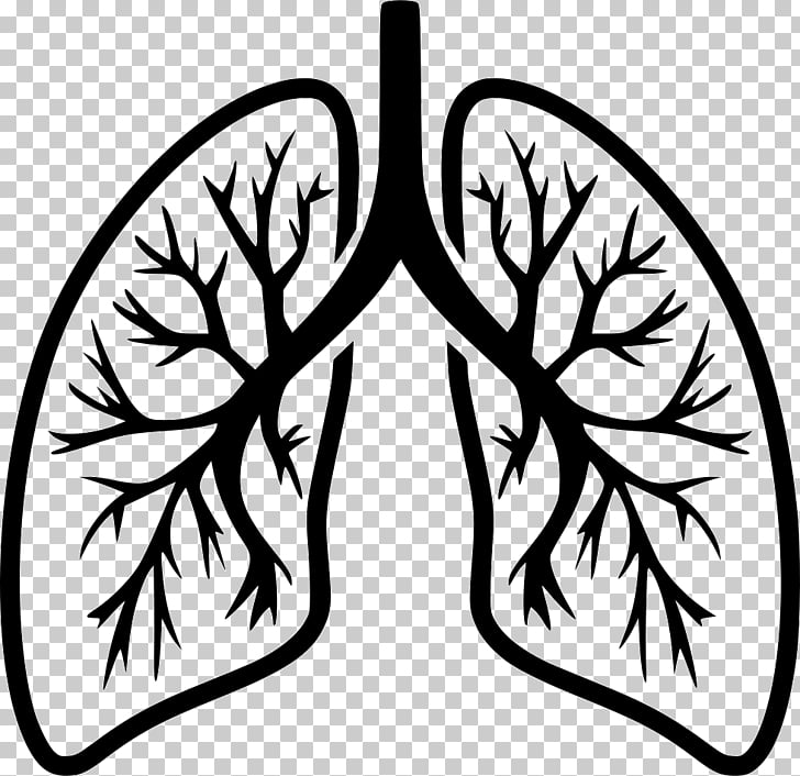 Lung Computer Icons Breathing Organ, human Lungs PNG clipart.