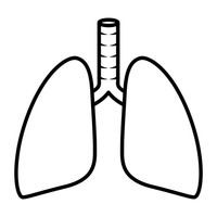 lungs clipart black and white #11