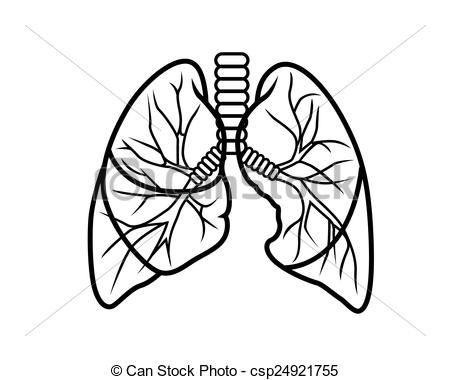 Similiar Black And White Outline Lungs Keywords.