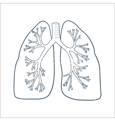 lungs clipart black and white - clipground, Powerpoint templates