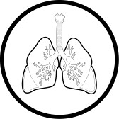 Lungs Clipart Black And White.