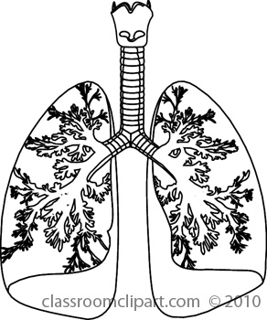 Similiar Healthy Lungs Black And White Keywords.