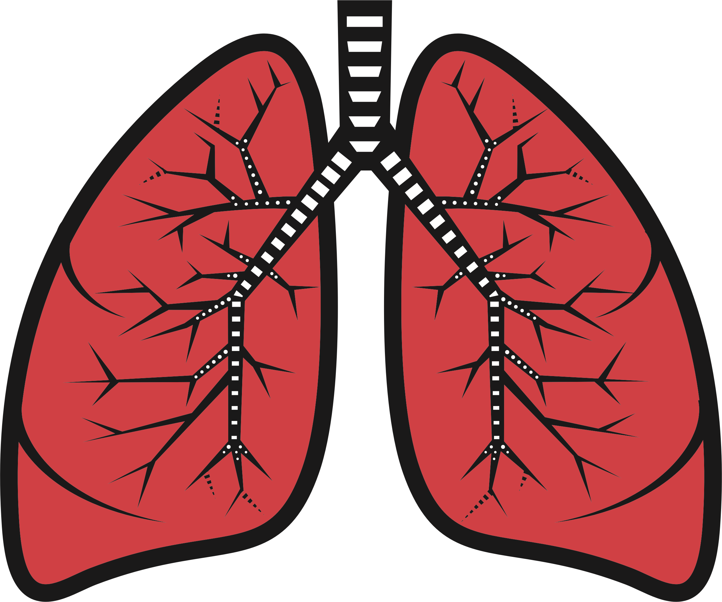 Lung clipart clipart images gallery for free download.