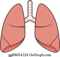 Lungs Clip Art.