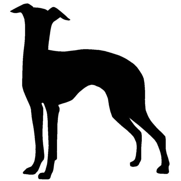 1000+ images about Greyhound Whippet Digital Art Clip Art on.