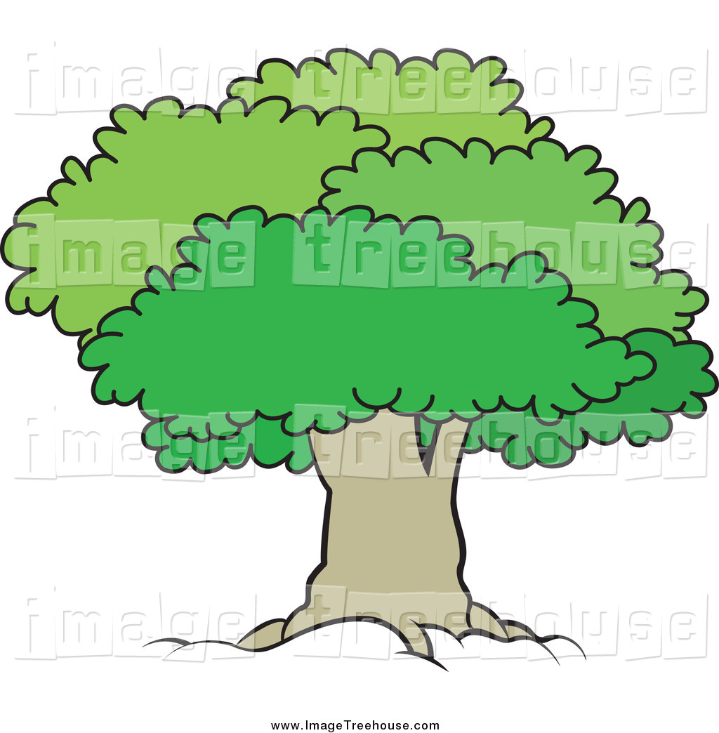 Clipart of a Mature Tree with a Green Lush Canopy by Lal Perera.