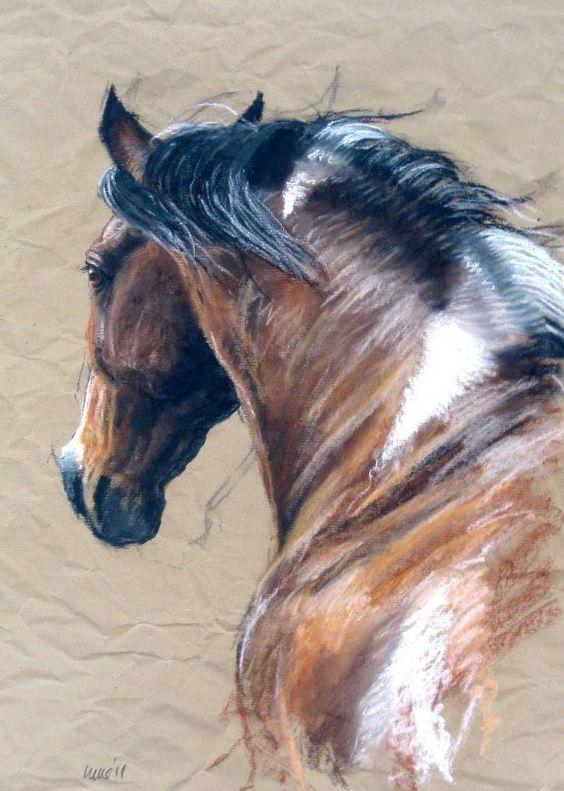 Equine Art.