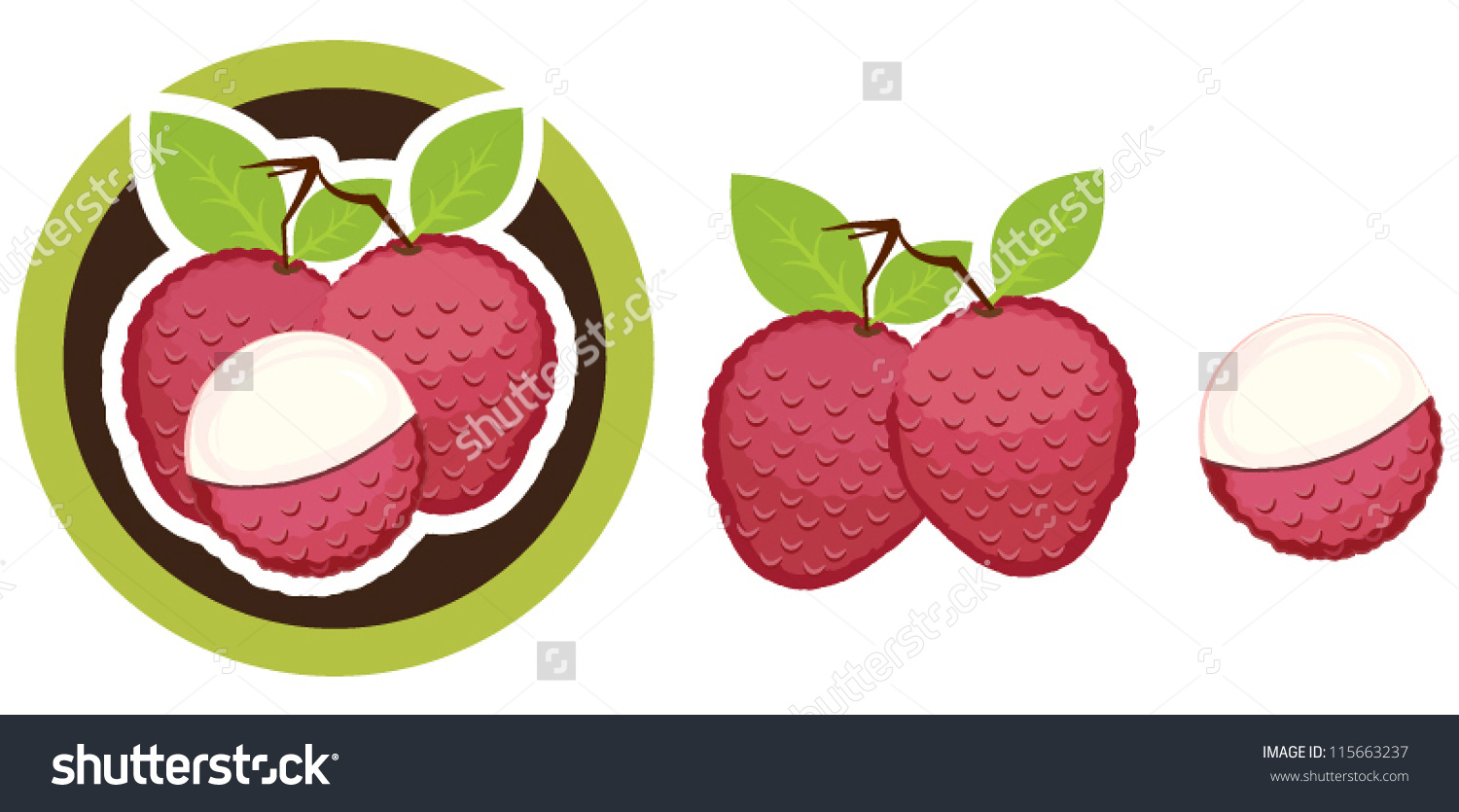 Lychee Stock Vector 115663237.
