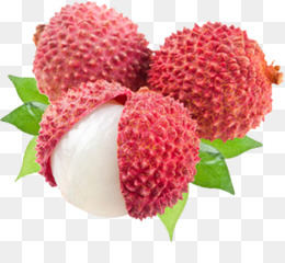 Lychee PNG.
