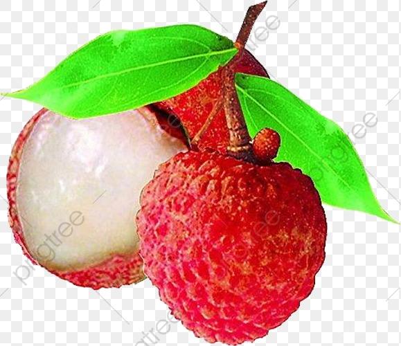 Fruit Lychee, Fruit Clipart, Food, Fruit PNG Transparent.