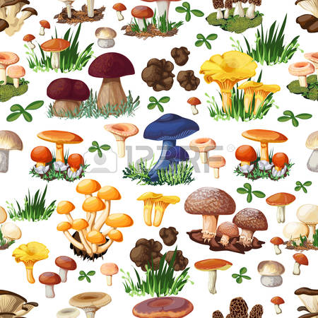 138 Puffball Stock Illustrations, Cliparts And Royalty Free.