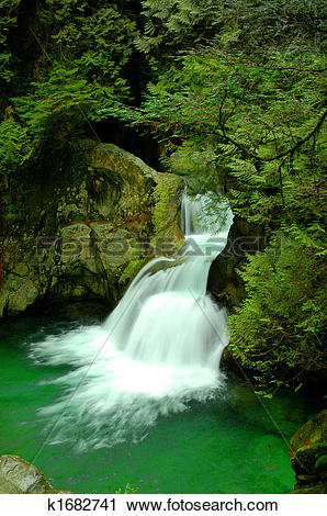 Stock Photography of Twin Falls waterfall in Lynn Canyon k1682741.