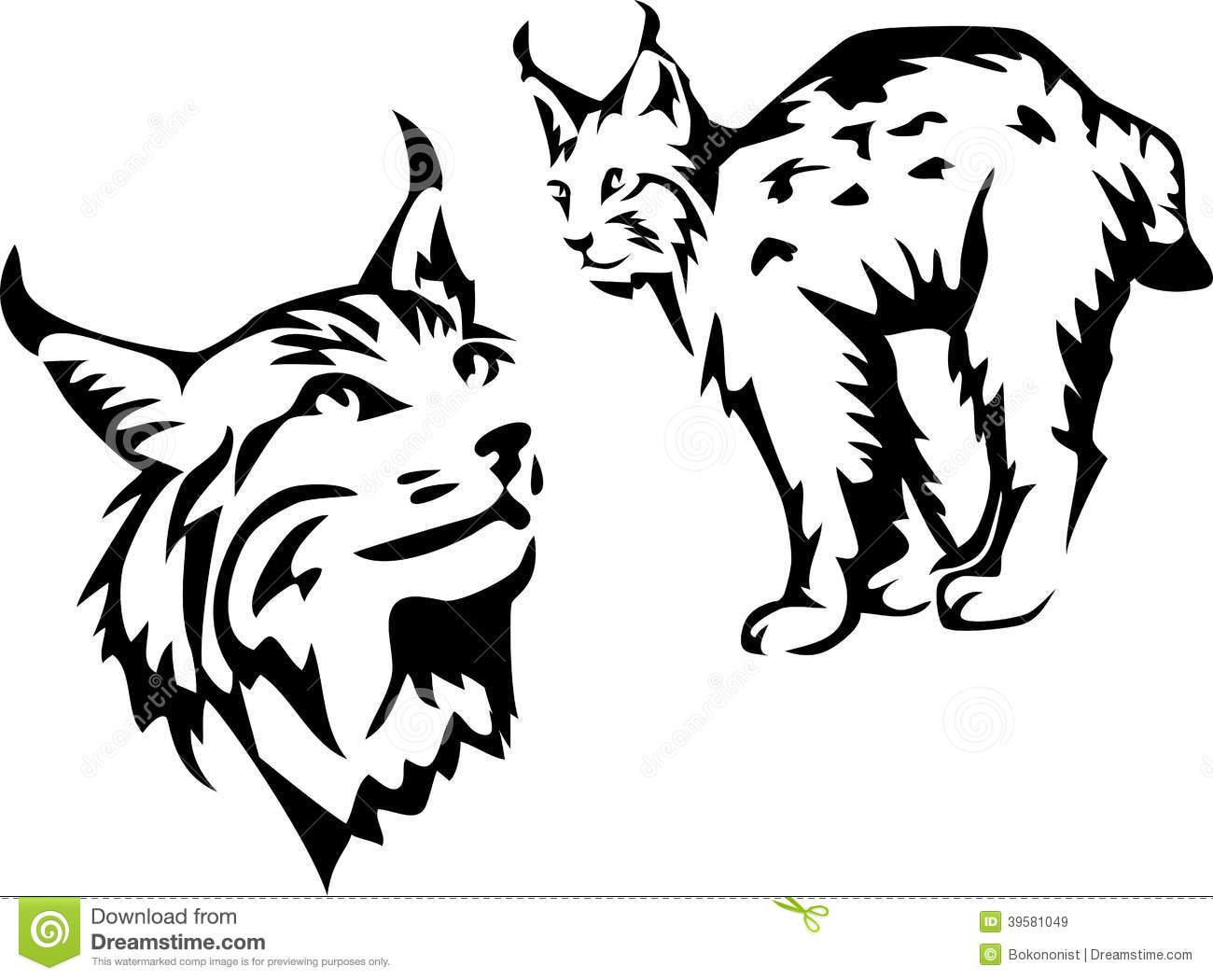 Lynx Stock Illustrations.