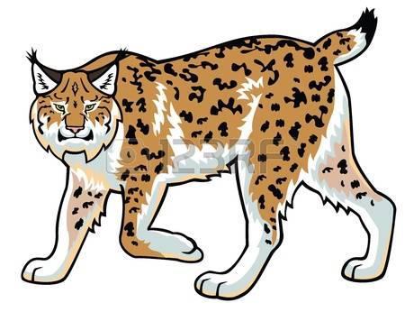 1,020 Lynx Stock Illustrations, Cliparts And Royalty Free Lynx Vectors.