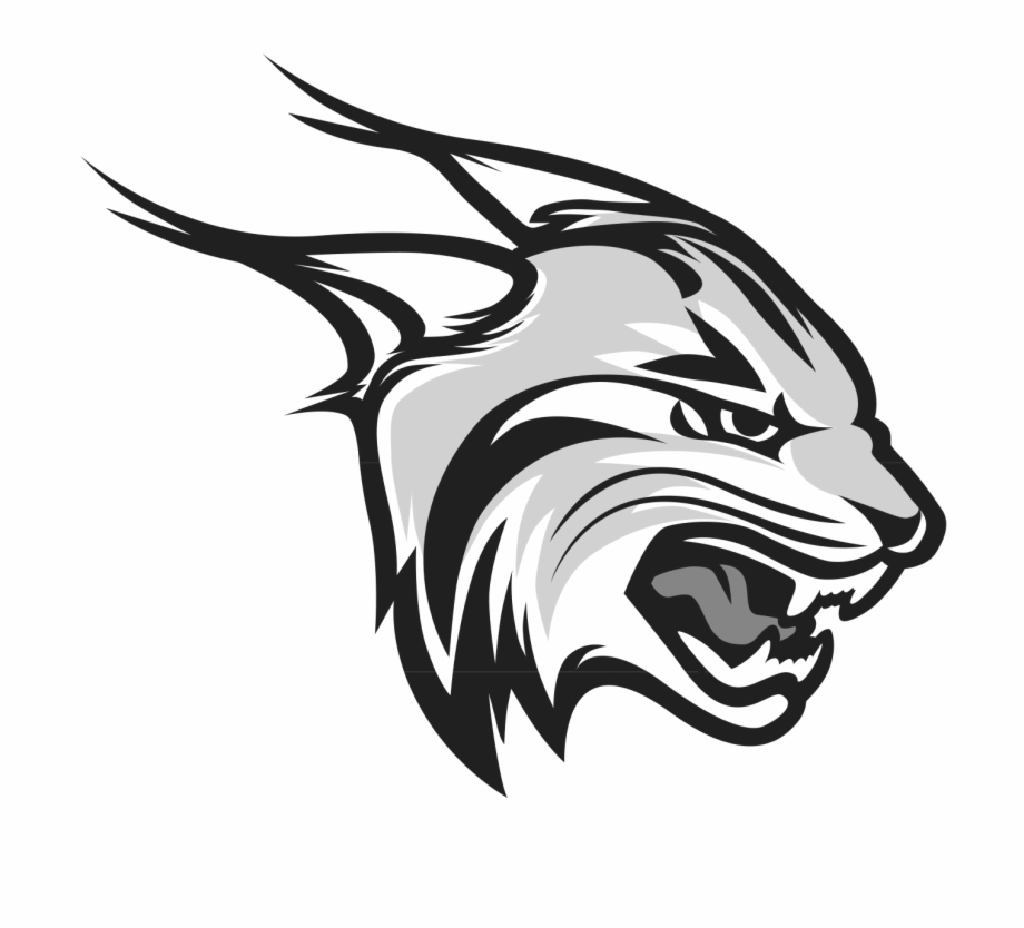 Lynx logo download free clipart with a transparent.