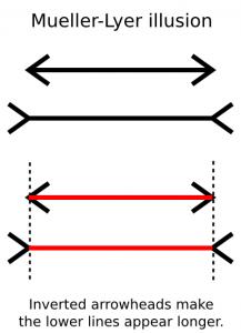 Muller Lyer Illusion Label Clip Art Download.
