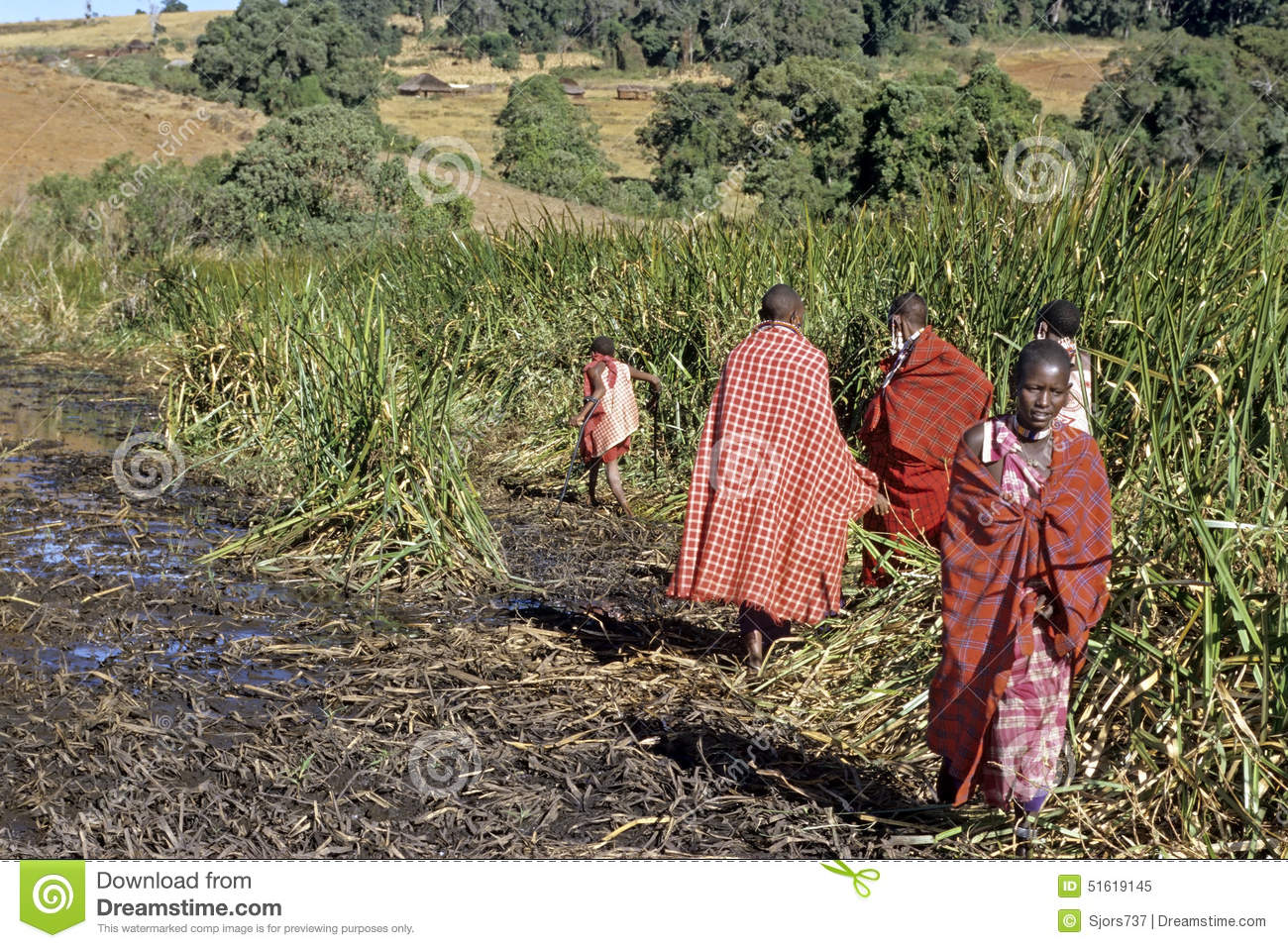 Maasai Village Life In Nature Reserve Rift Valley Editorial Image.