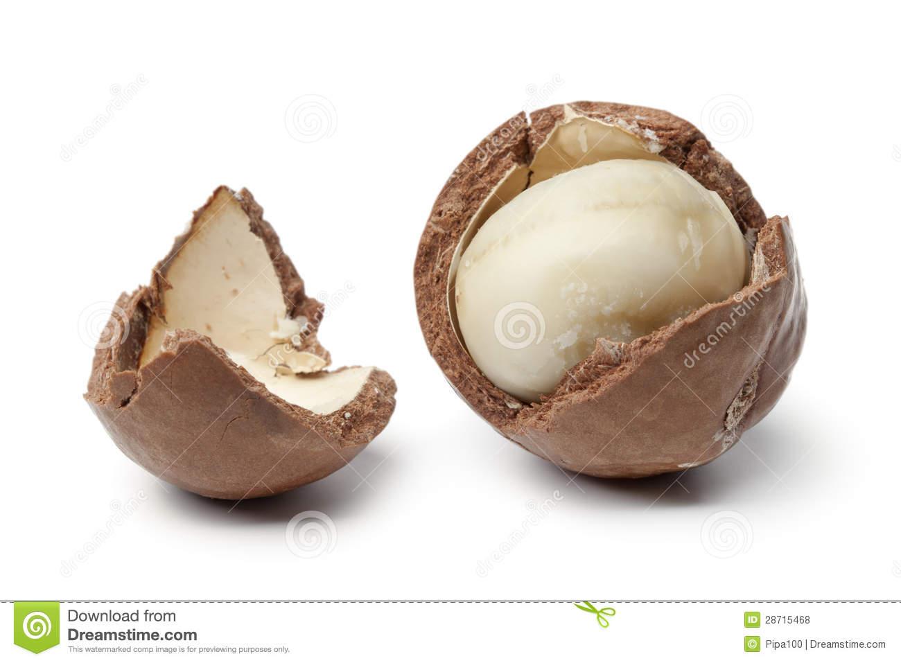 Macadamia Nut In A Broken Shell Royalty Free Stock Photos.