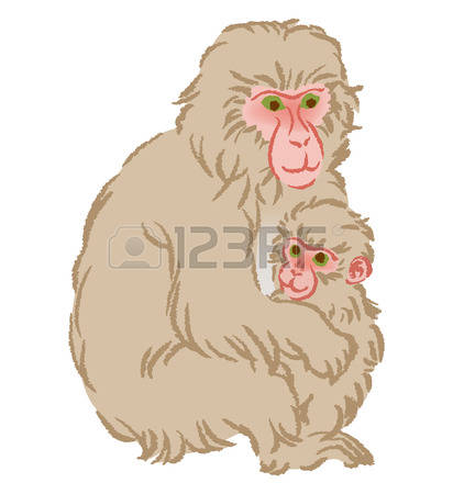 275 Japanese Macaque Stock Vector Illustration And Royalty Free.