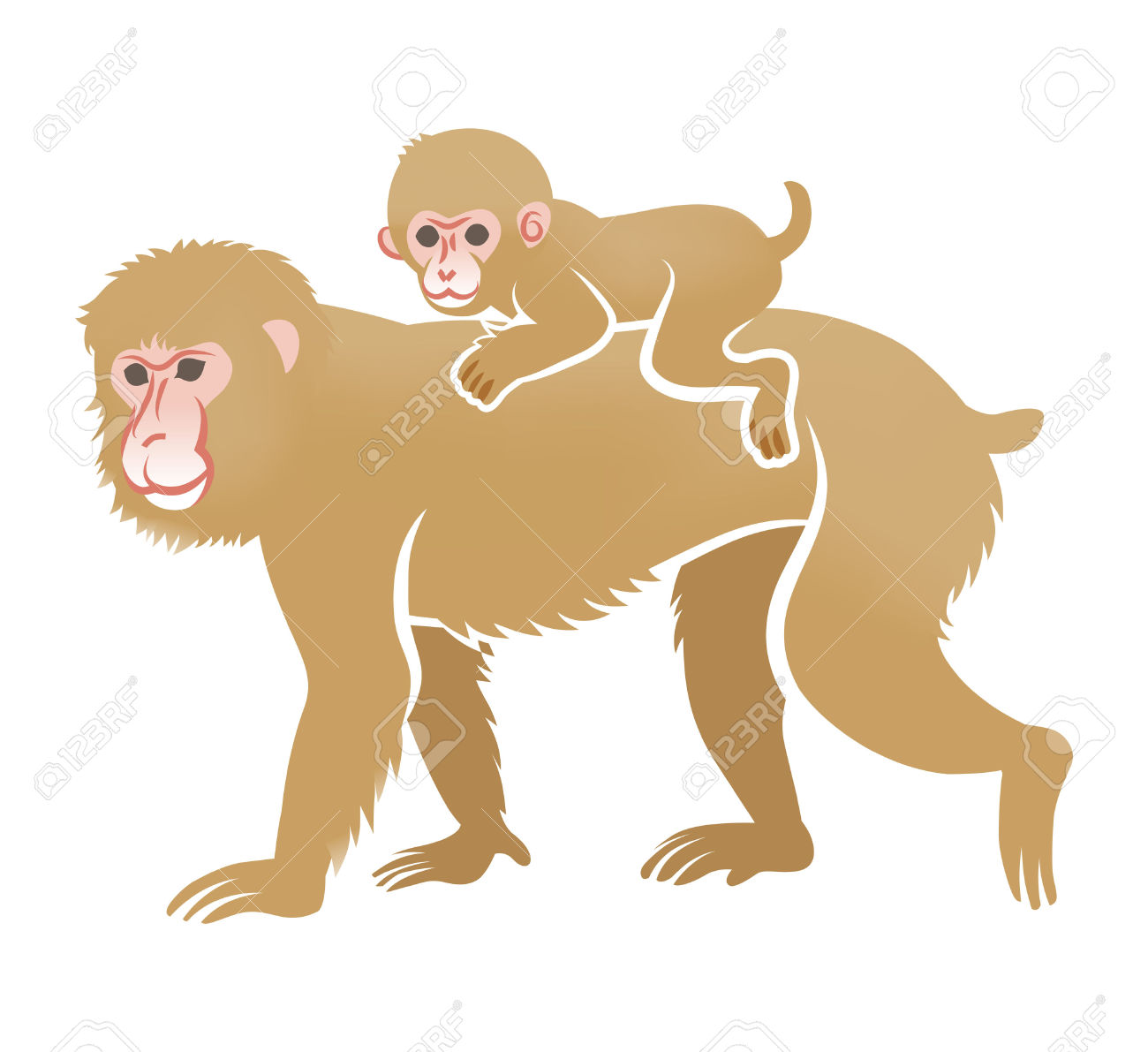 Baby Macaque Monkey Clip Art.