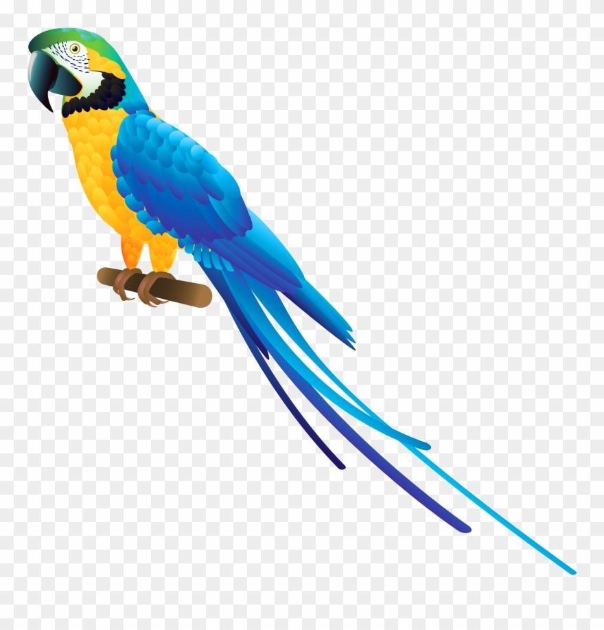 Blue Parrot Png Clipart.
