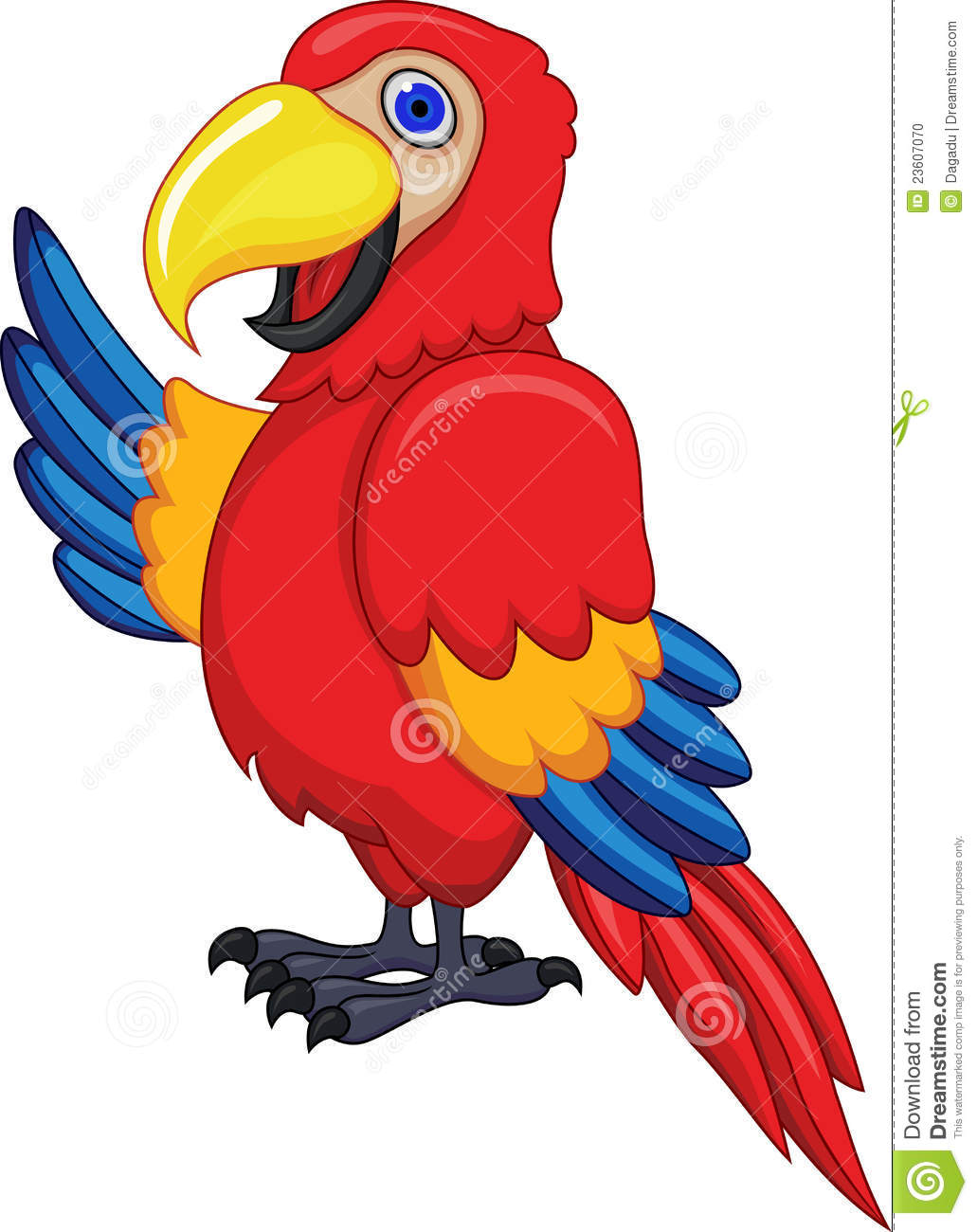 Macaw cliparts.