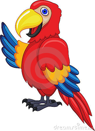 Showing post & media for Macaw clip art cartoon.