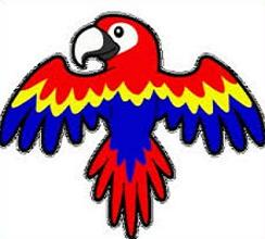 Free Macaw Clipart.