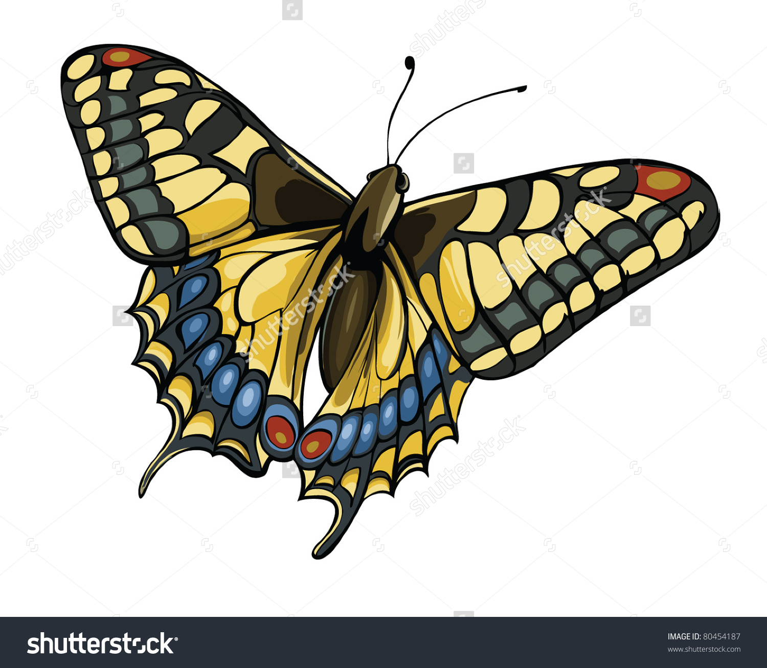 Vector Illustration Of Butterfly Swallowtail (Papilio Machaon.