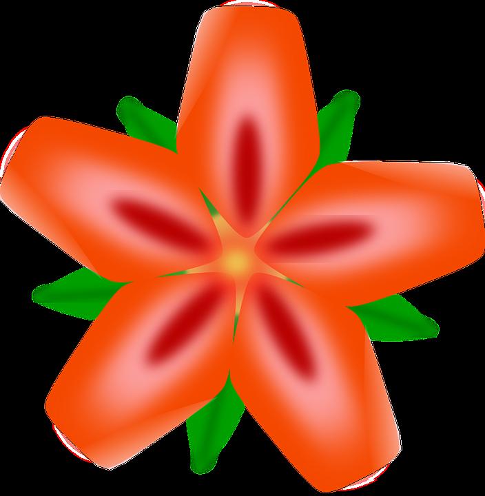 Free vector graphic: Flowers, Orange, Abstract, Macro.