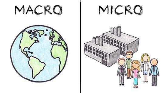 Understanding micro and macro economics..