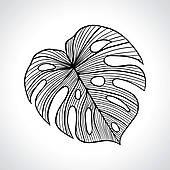 Macro Clip Art.