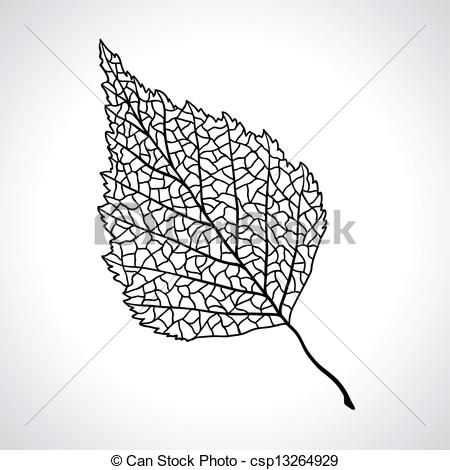 Vector Illustration of Black macro leaf of birch tree isolated.