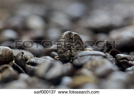 Picture of Coffee beans, macro photography sarf000137.