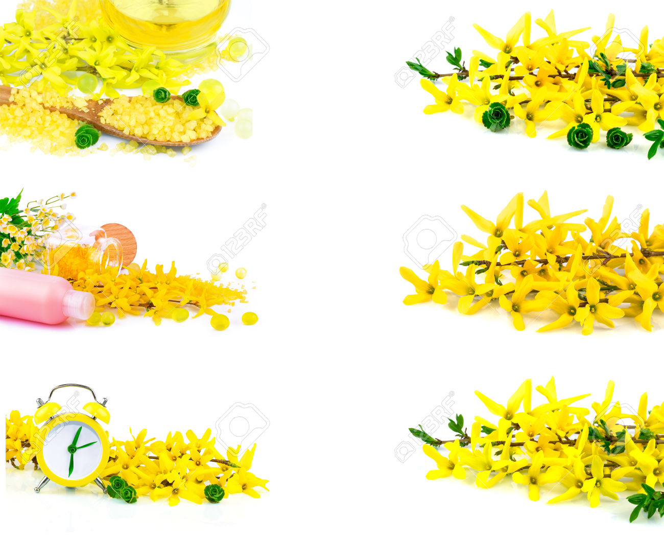 Macro View Of Spa Product With Spring Flowers Isolated On White.