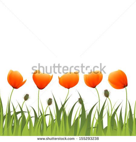 Macro Poppy Flower Nature Stock Vectors & Vector Clip Art.