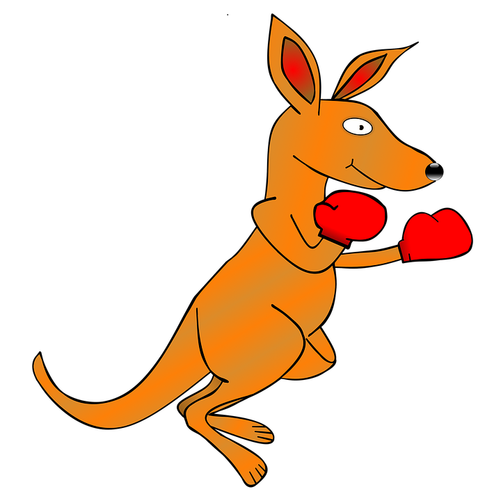 kangaroo outline clipart boxing gloves - Clipground