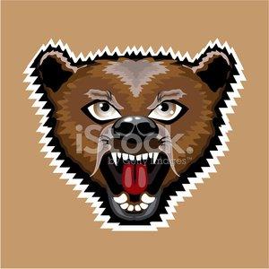 Mad bear cartoon Clipart Image.
