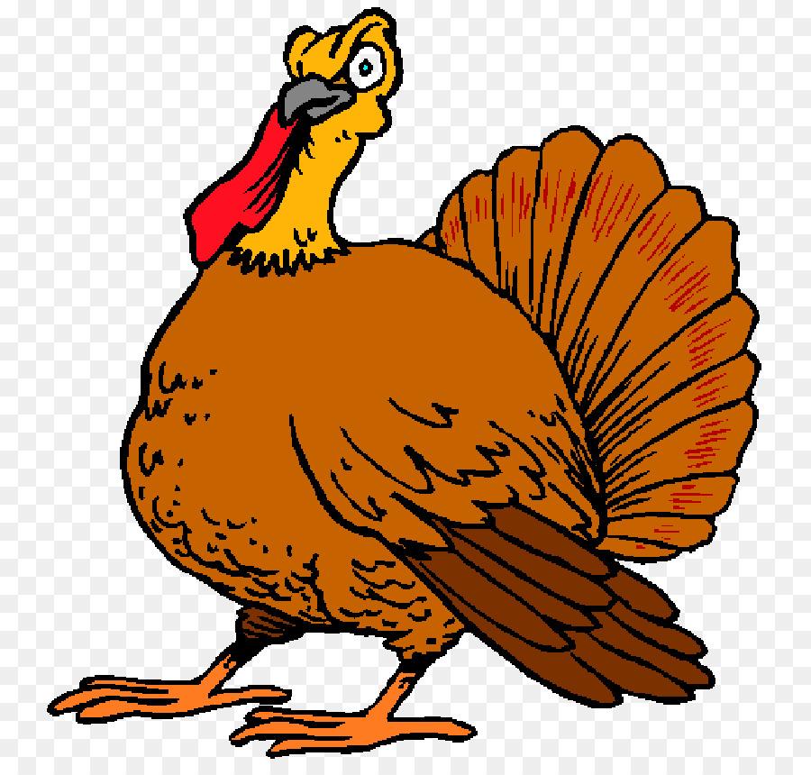 Turkey Cartoon clipart.