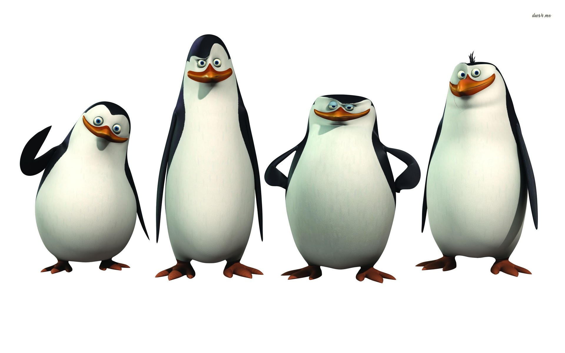 Penguins of madagascar clipart.