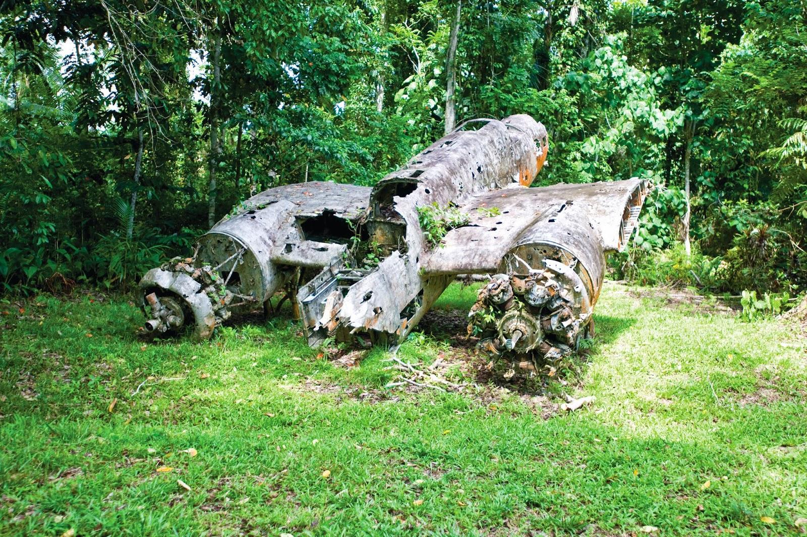 Plane Wreck, Papua New Guinea 2019.